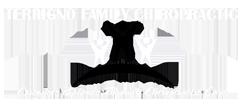 Terrigno Family Chiropractic